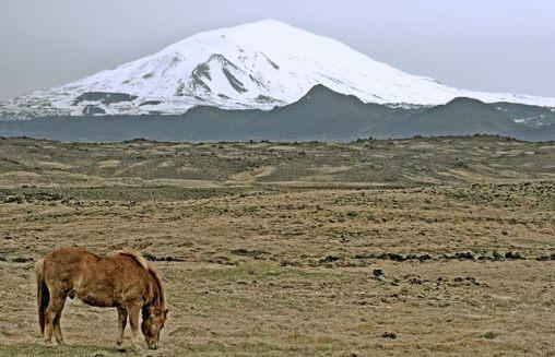 Fotky: Sopka Hekla (Island)